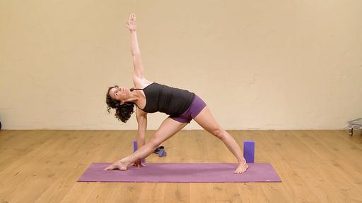 Video thumbnail for: Iyengar Yoga for Beginners 1