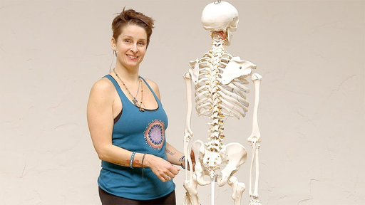 Video thumbnail for: Yoga Anatomy - insight into the sacroiliac joint
