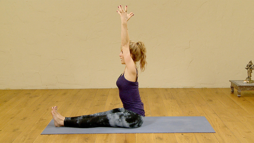 Video thumbnail for: Mini Vinyasa Hamstring flow