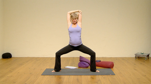 Video thumbnail for: Prenatal Flow - second trimester