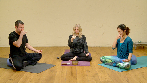 Video thumbnail for: Meditation / pranayama