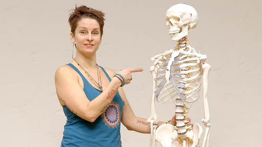 Video thumbnail for: Yoga Anatomy - Anatomical insight on the shoulder
