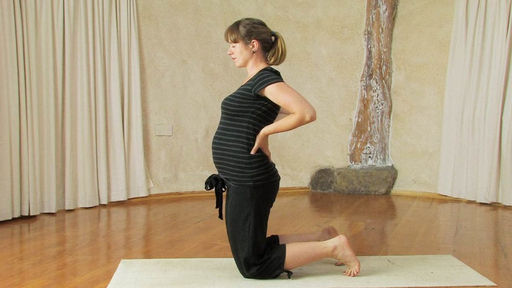 Video thumbnail for: First and Second trimester Pregnancy Yoga