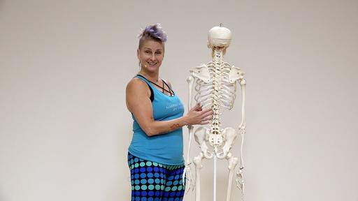 Video thumbnail for: The female pelvis in yoga