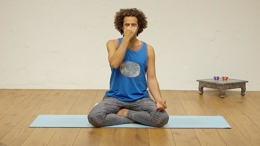 Video thumbnail for: The four purifications: Pranayama for a balanced lIfe