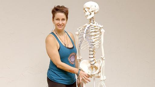 Video thumbnail for: Yoga anatomy: The hip socket