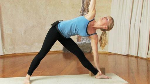 Video thumbnail for: Beginners' full spectrum yoga class