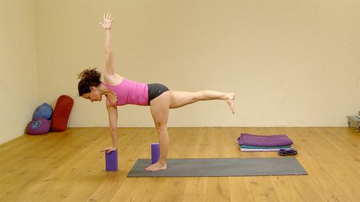 Video thumbnail for: Fundamentals of Yoga: Intermediate twists