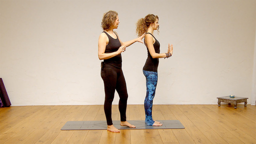 Video thumbnail for: Upper body alignment tutorial in Chaturanga