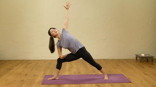 Video thumbnail for: Intermediate to Advanced Standing poses