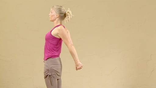 Video thumbnail for: Creative continuous flow of Sun Salutations