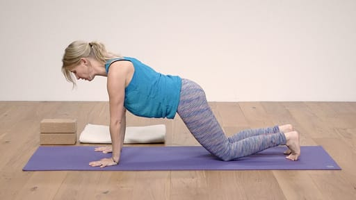 Video thumbnail for: Yoga for Beginners Course Class 3 - Fundamentals of flow