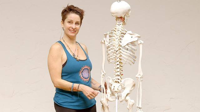 Thumbnail for playlist: Yoga Anatomy