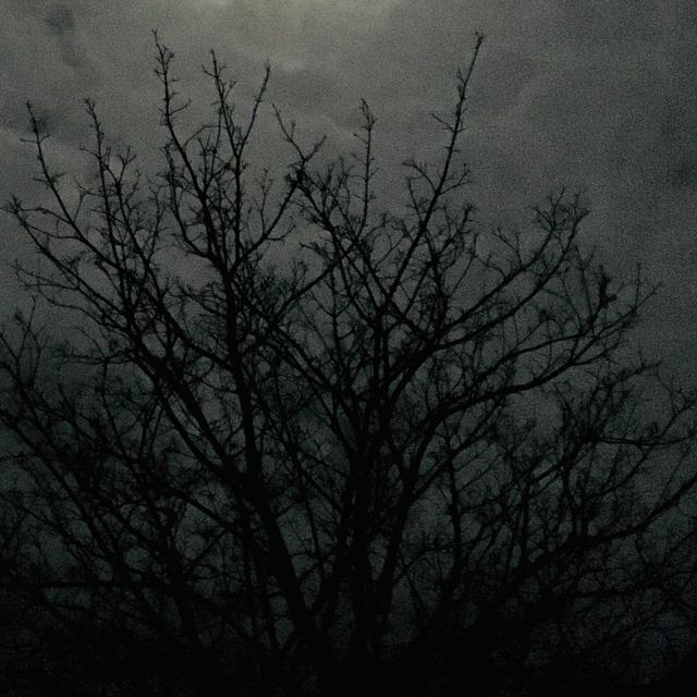 Thumbnail for playlist: moonlit magic