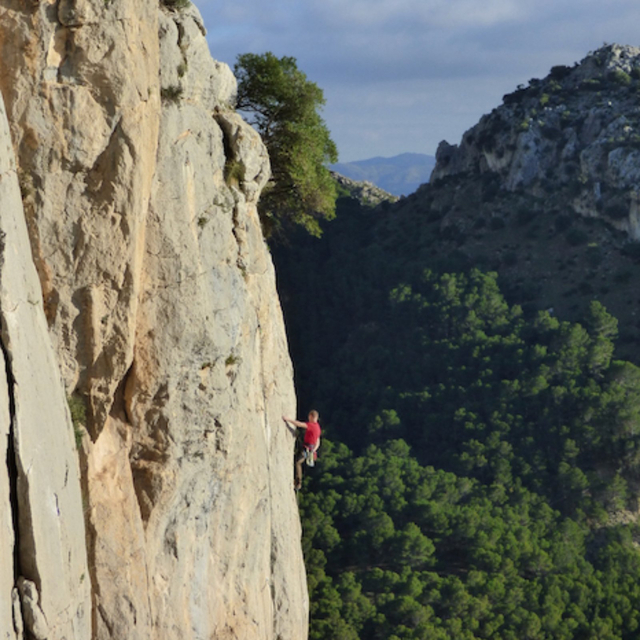 Thumbnail for playlist: Yoga for climbers