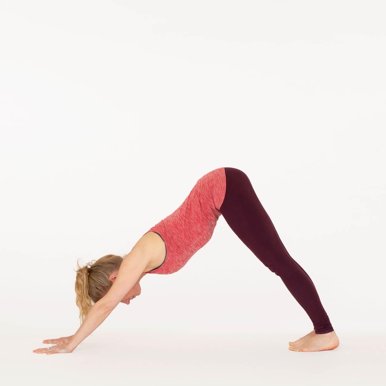 How to do Downward Facing Dog Pose - Adho Mukha Svanasana  Ekhart